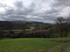 Wales (8)